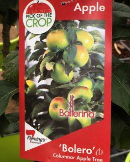 Ballerina Apple Varieties