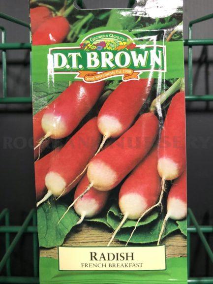 Seeds - radish french breakfast