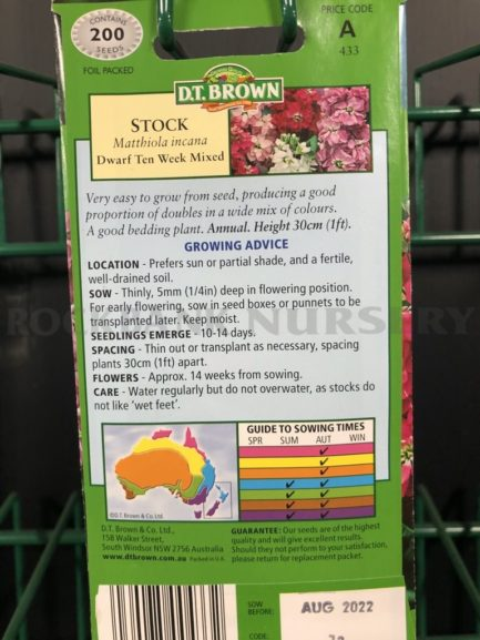 Seeds - stock dwarf ten week mixed
