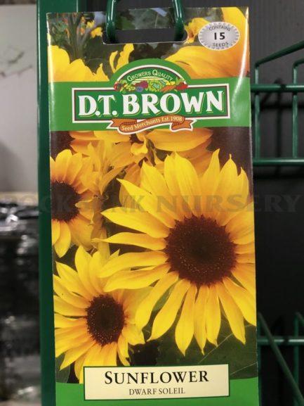 Seeds - sunflower dwarf soleil