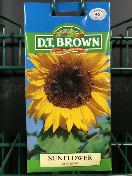 Seeds - sunflower sun king