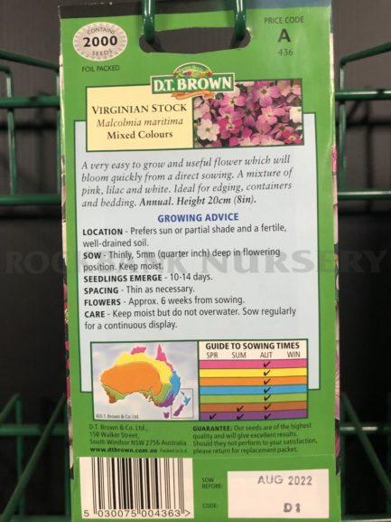 Seeds - virginian stock mixed colours