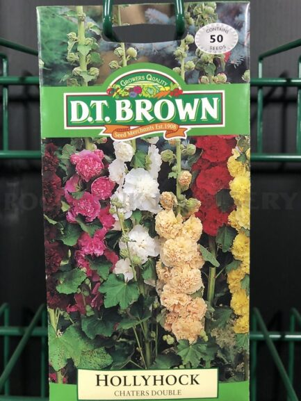Seeds - hollyhock chaters double
