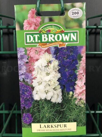 Seeds - larkspir dwarf haycinth mixture