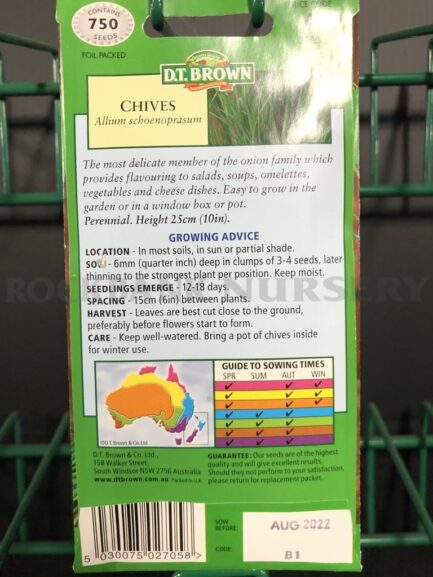 Seeds - chives