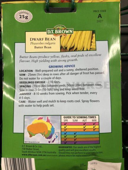 Seeds - dwarf bean butter bean